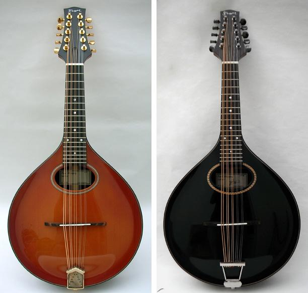rosewood-ten-string-main