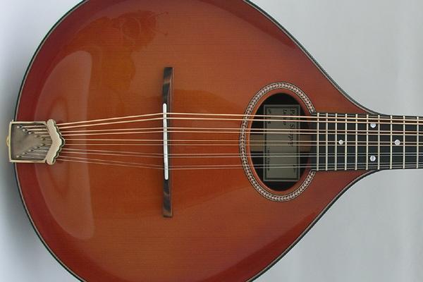 ROSEWOOD 10-String MANDOLIN